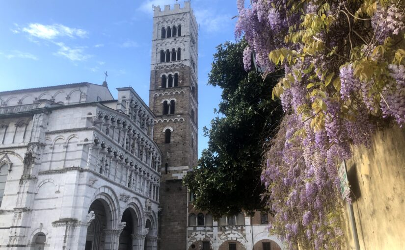 Stunners in the sky: Lucca's top towers