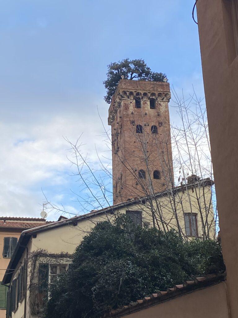 Guinigi Tower Lucca Tuscany